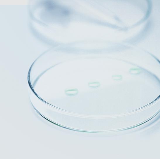 La DMS contre les bactéries